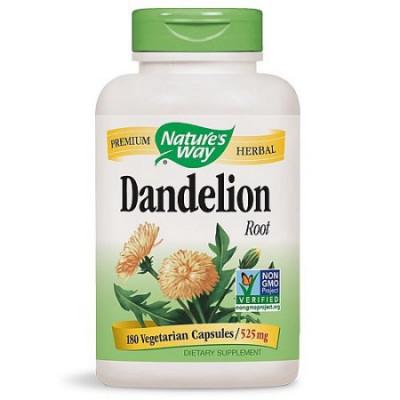 Raiz Dente de Leão 525mg (Dandelion) - Nature's Way - 180 cáps.